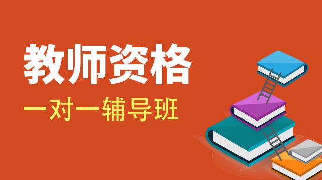 教师资格证考试一对一辅导班