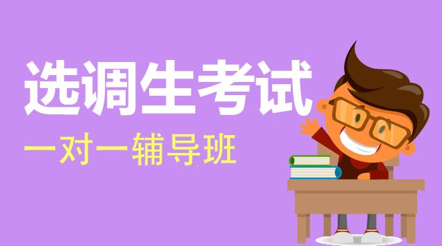 选调生考试一对一辅导班