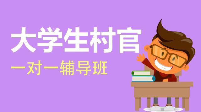 大学生村官考试一对一辅导班