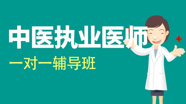 中医执业医师考试一对一辅导班