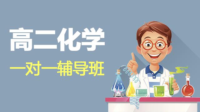 高二化学一对一辅导班