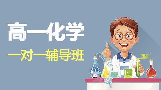 高一化学一对一辅导班