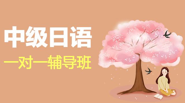 中级日语一对一辅导班