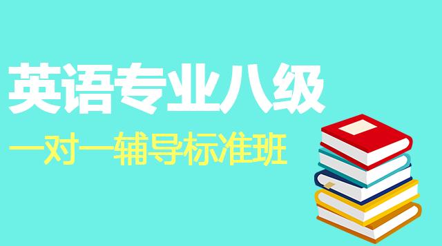 英语专业八级一对一辅导标准班
