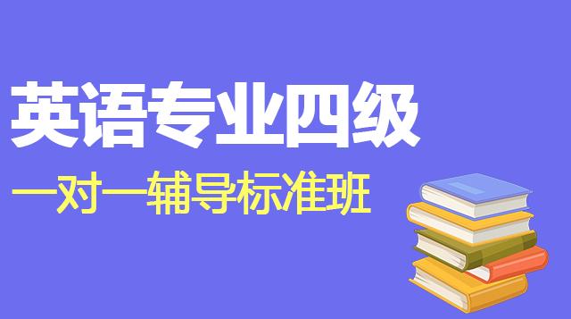 英语专业四级一对一辅导标准班