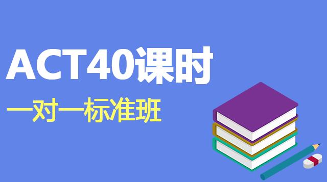 ACT考试40课时一对一辅导标准班